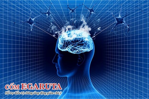Não bộ của trẻ tăng động và người bệnh động kinh đều có sự rối loạn hoạt động điện